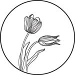 The Blue Tulip