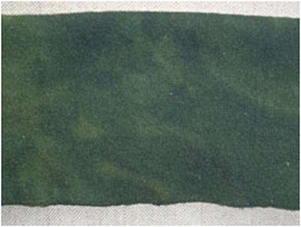 Evergreen (over Old Salem Gray) 1/4 Yard Bundle — $12.50